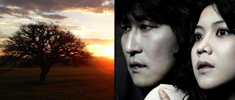 «Stille lys» (2007, Reygadas) og «Thirst» (2009, Park)