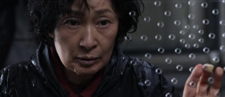 Det asiatiske filmåret 2009