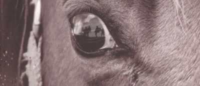 Spielbergs neste film er War Horse