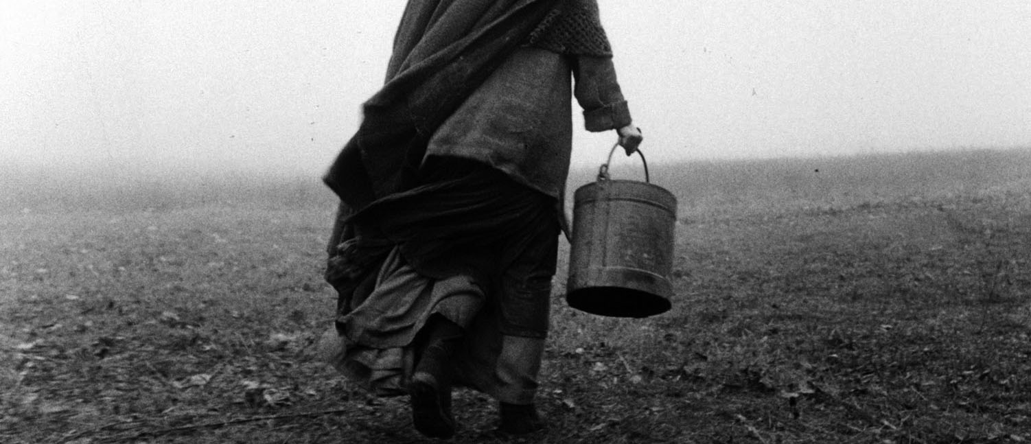 «The Turin Horse»