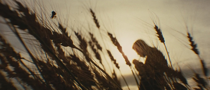 «The Assassination of Jesse James by the Coward Robert Ford» (Andrew Dominik, 2007)