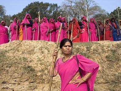 pink-saris