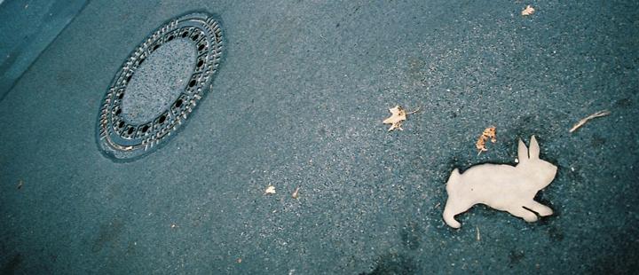 Stillbilde fra den tyske dokumentarfilmen «Rabbit á la Berlin»