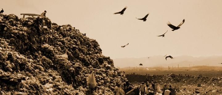 soppel-blir-kunst-i-dokumentaren-waste-land