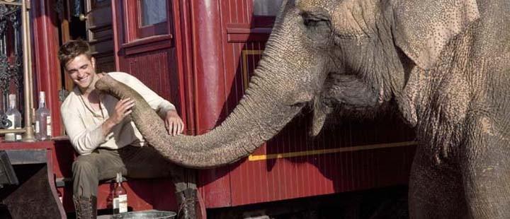 vann-til-elefantene