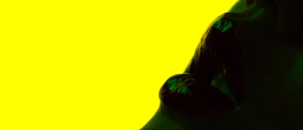 Gaspar Noé byr på sensuell fruktsyre i ny Animal Collective-video