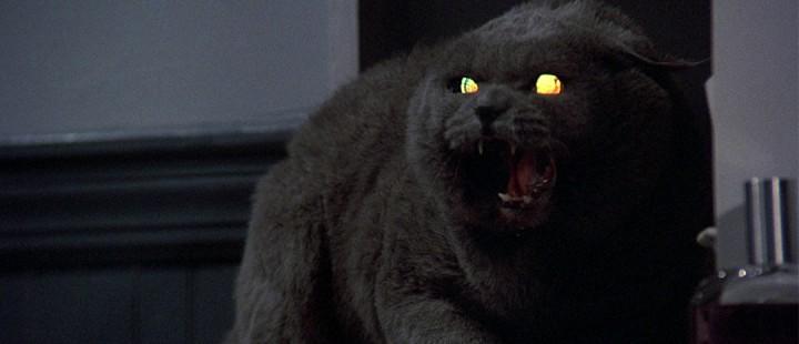 Nye filmatiseringer av Pet Sematary og The Addams Family på trappene