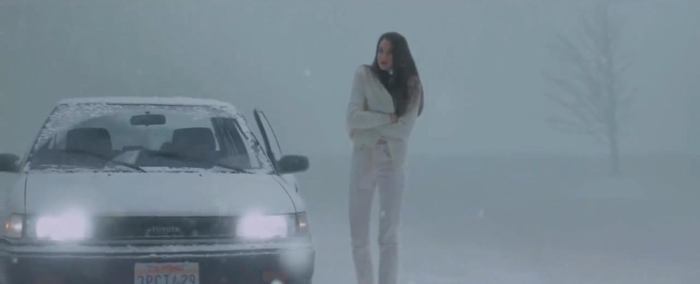 White Bird In A Blizzard 6