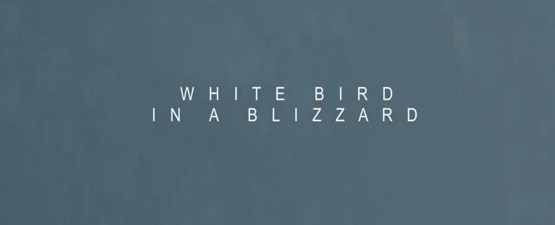 White Bird In A Blizzard 7