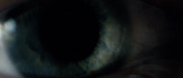analysen-blind-2014