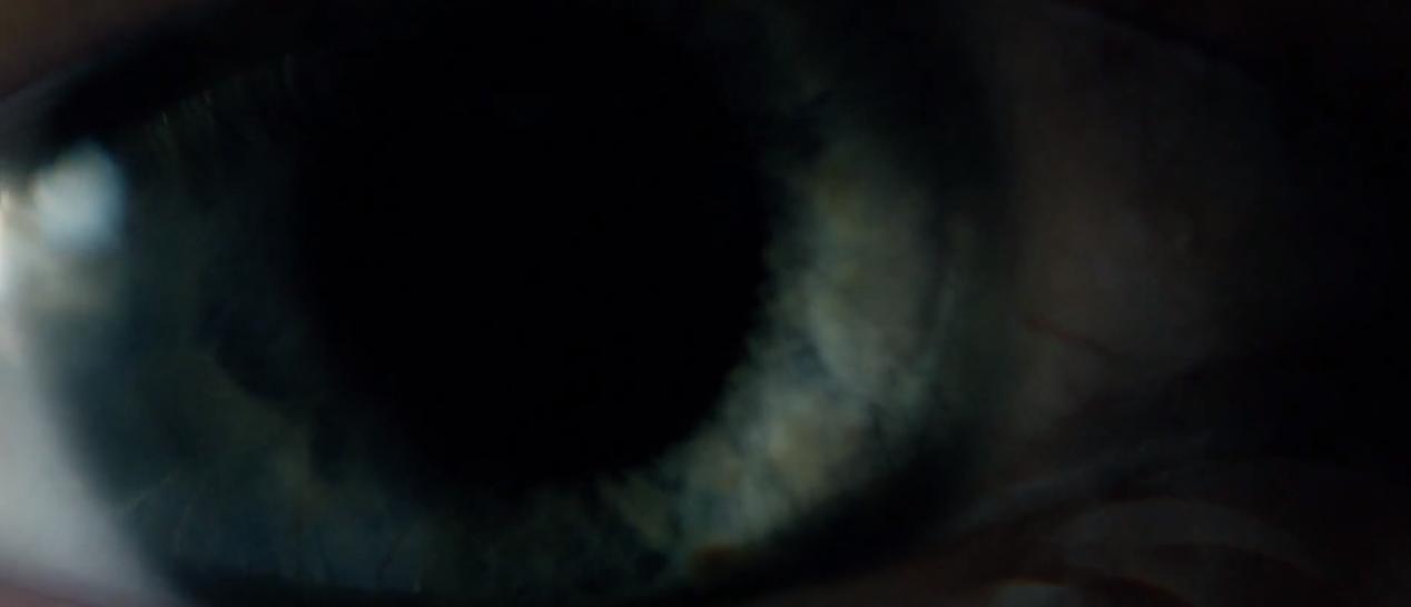 Analysen: Blind (2014)