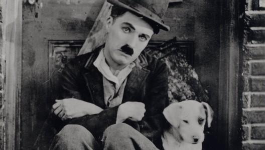A Dog's Life (Charlie Chaplin).