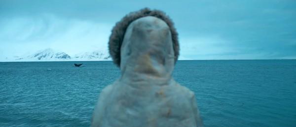 Analysen: Operasjon Arktis (2014)
