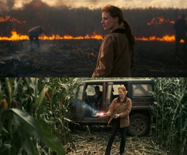 Murph brannen