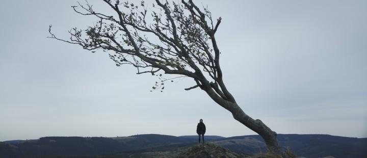 Nymphomaniac: Director's Cut vises på Cinemateket