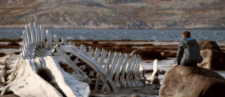 Den totale tristesse i Zvyagintsevs Leviathan