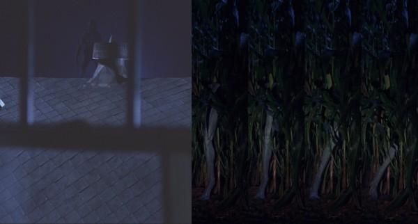 alien 5 montage