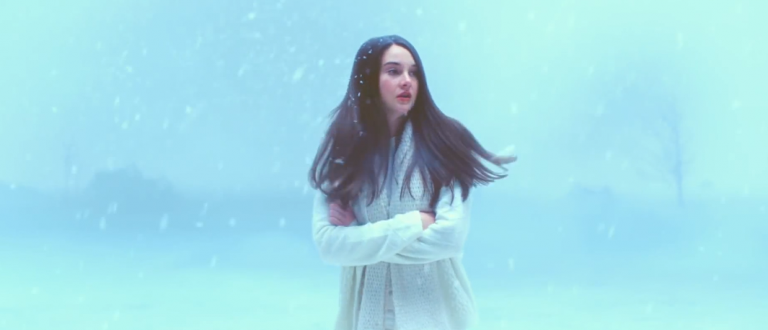 Uttrykksfulle ujevnheter: White Bird in a Blizzard