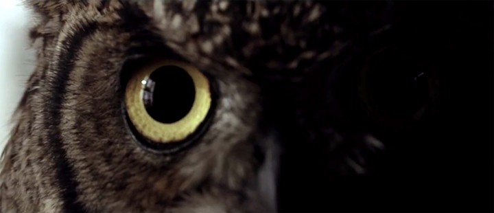 Friluftens uhygge og norsk horror returnerer i fersk teaser til Villmark 2