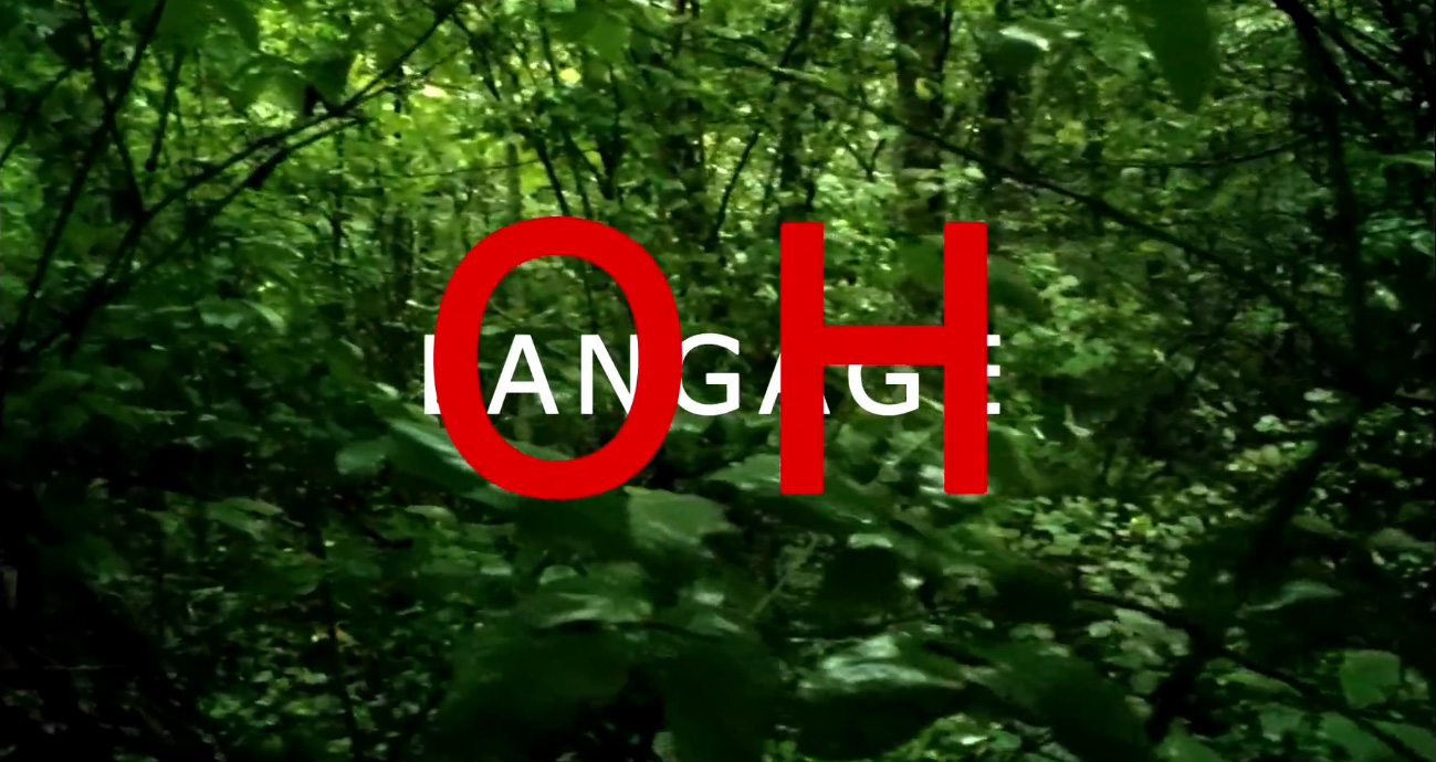 «Adieu au langage»