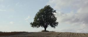 filmkritikerprisen-2015-til-eskil-vogt-og-blind-fagpris-til-andrea-braein-hovig-og-hederspris-til-anja-breien