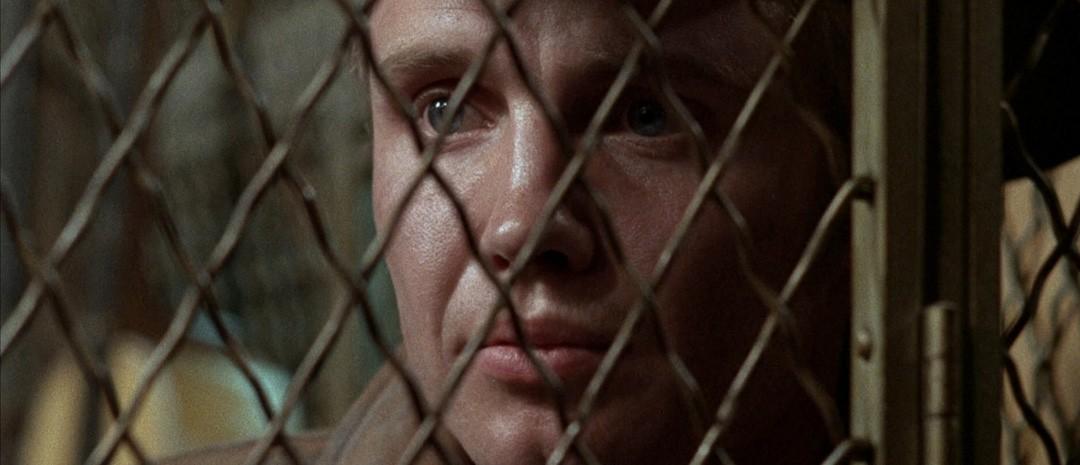 Filmfrelst #181: Midnight Cowboy