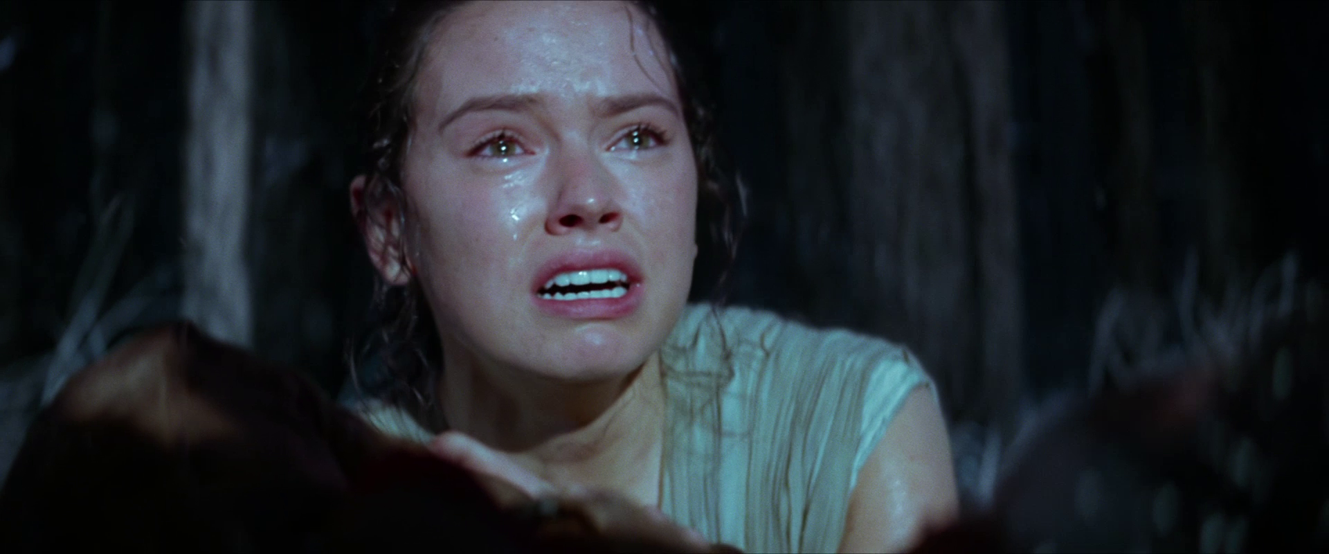 «The Force Awakens»