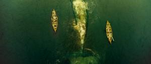 visuell-medvind-redder-in-the-heart-of-the-sea-fra-filmhavets-dyp
