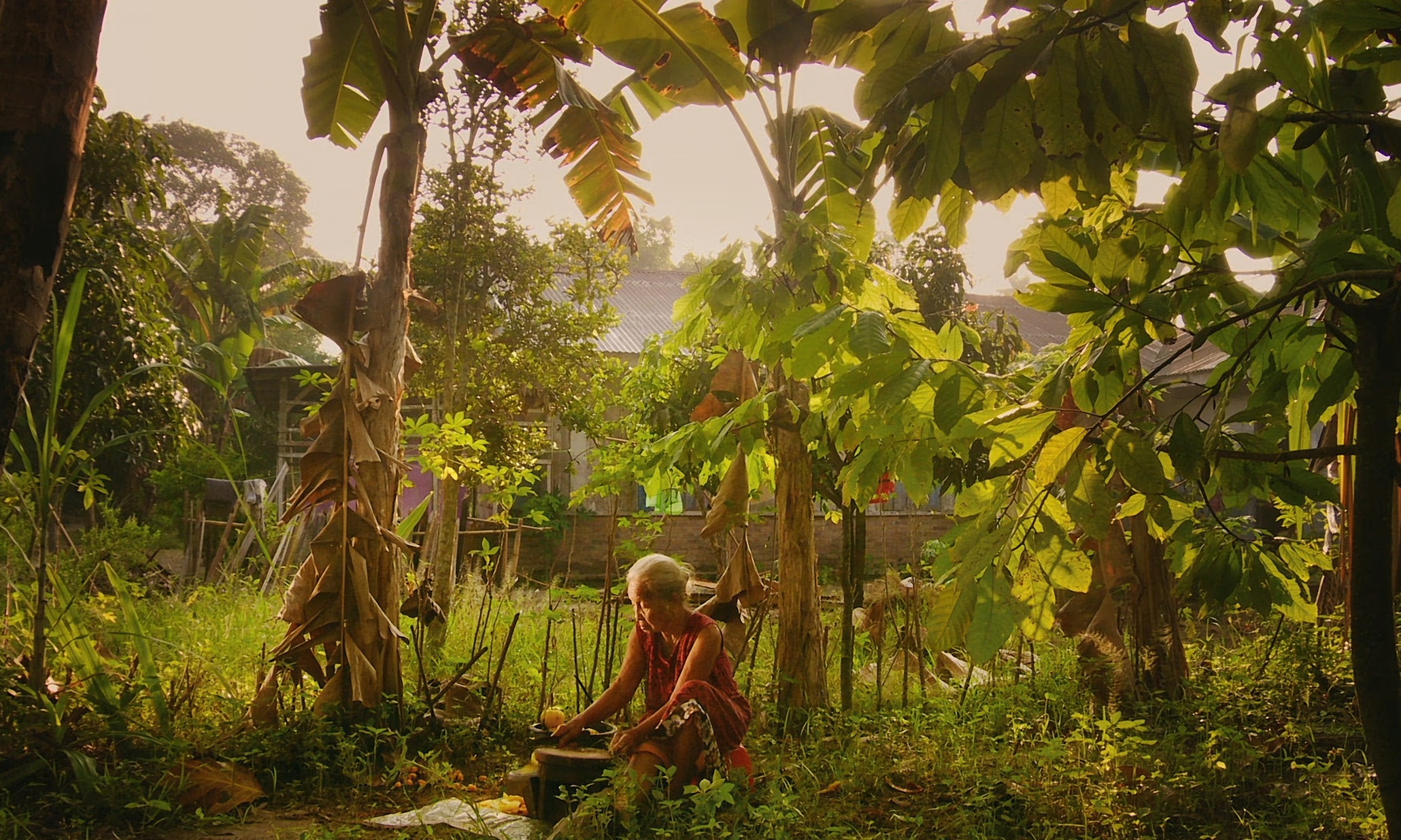 «The Look of Silence»