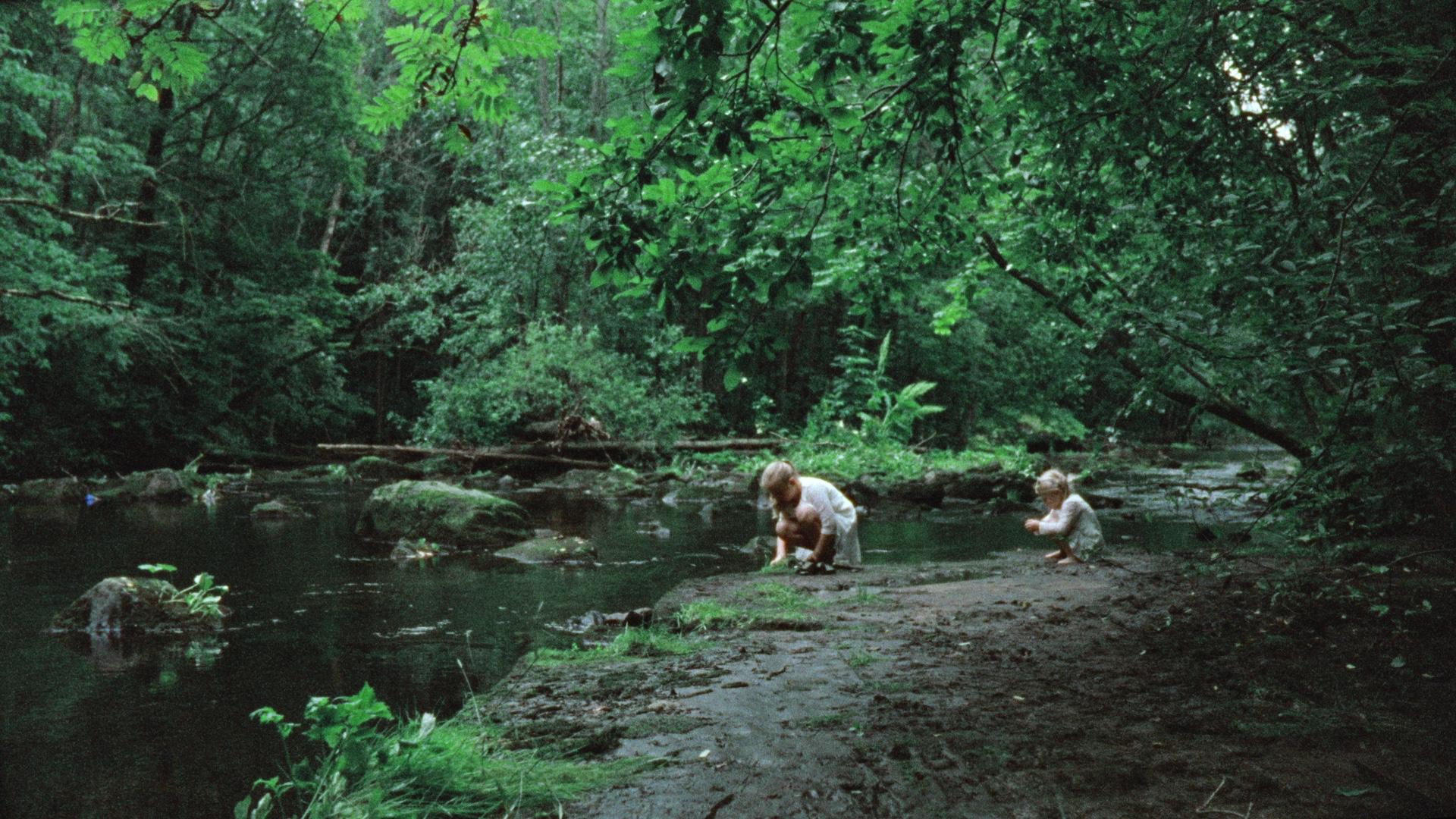 Bildet er hentet fra «Vill Mark» av Thea Hvistendahl, som er representert i FilmLab med prosjektet «Syden».