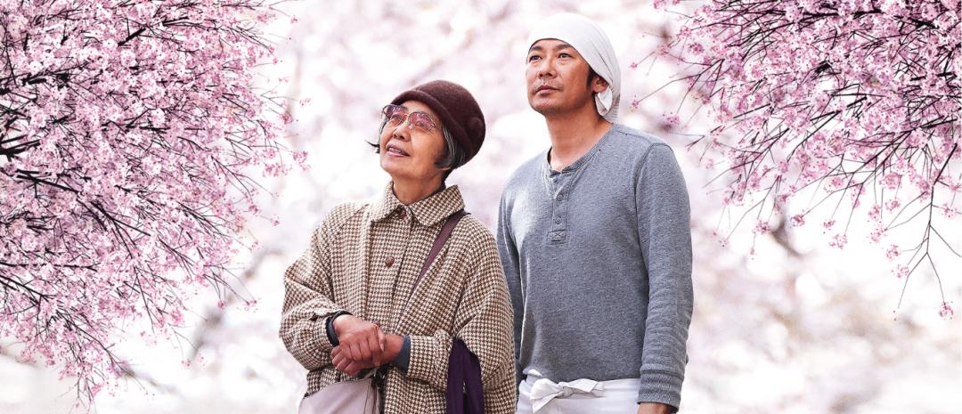 En poetikk for de små tingene: Naomi Kawases Under kirsebærtrærne