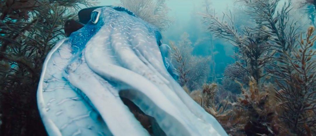 Eksklusivt: Bergen internasjonale filmfestival viser Terrence Malicks Voyage of Time