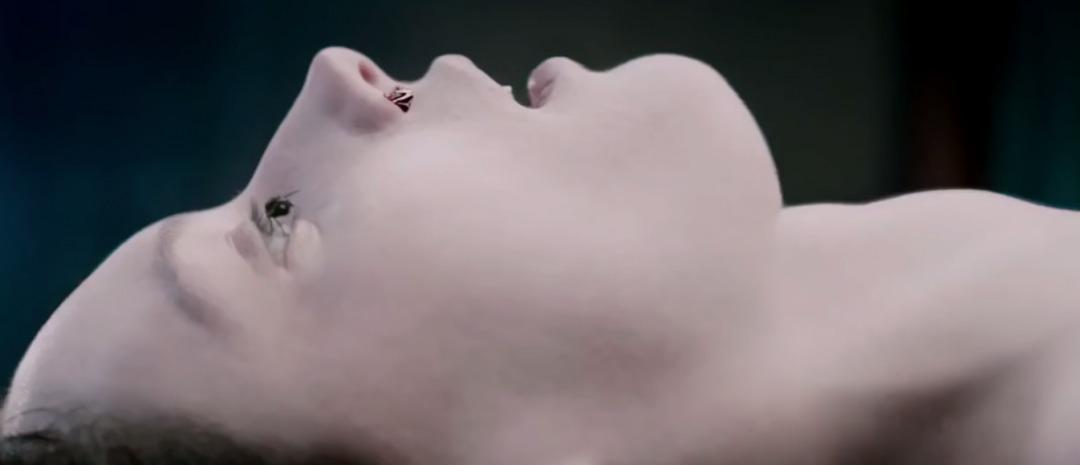 «The Autopsy of Jane Doe».