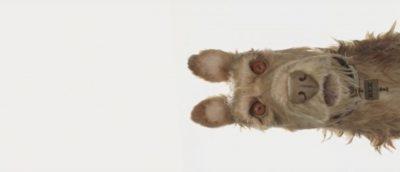 Yoko Ono, Greta Gerwig og Scarlett Johansson med stemmer i Wes Andersons animasjonsfilm Isle of Dogs