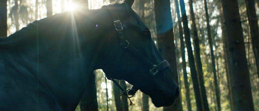 Norske «Ut og stjæle hester» vant en sølvbjørn i Berlin.