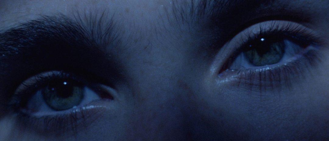 Dario Argentos «Phenomena» (1985).