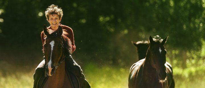 Årets Amanda-nominasjoner klare –  Ut og stjæle hester nominert til flest priser