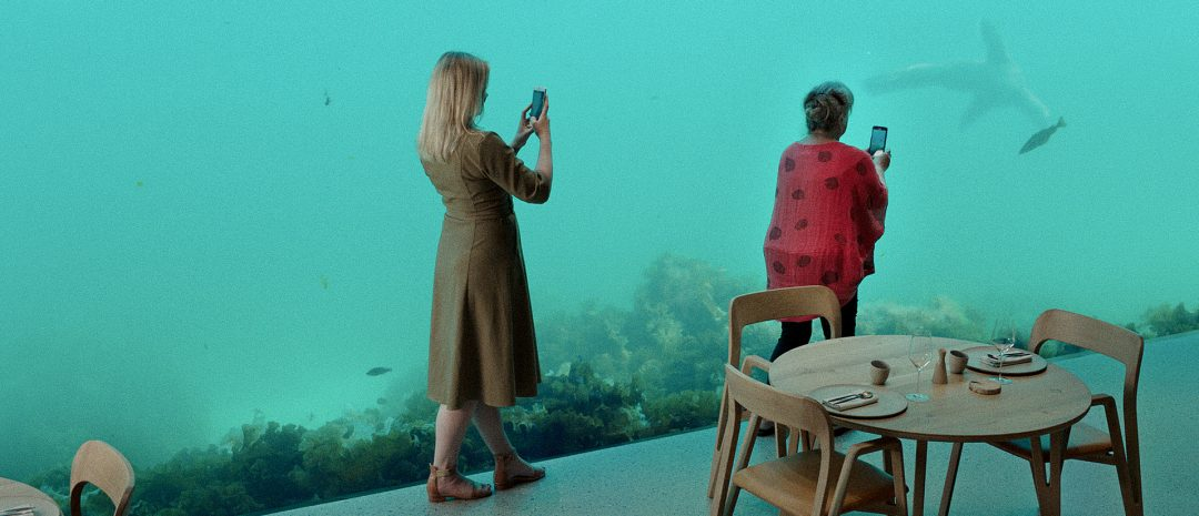 «The Wonders Beneath the Sea» av Ellen Ugelstad konkurrerer i årets norske kortfilmprogram.